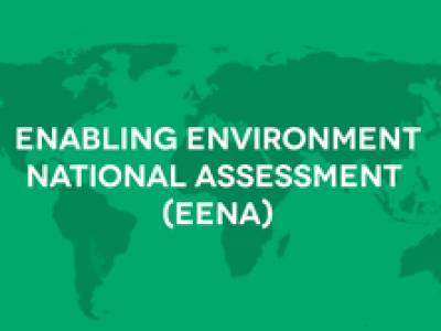 Call for proposals: Application for partners for pilot national civil society assessment in El Salvador, Georgia and Indonesia.