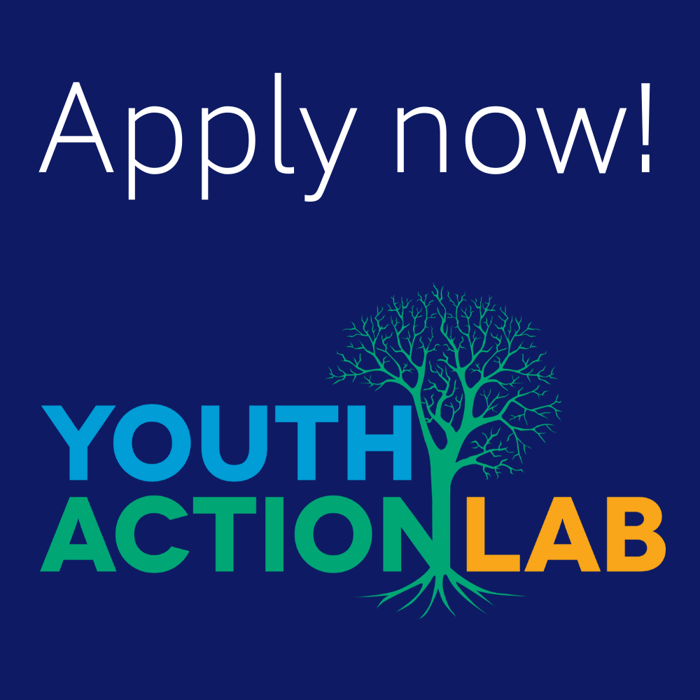 Youth Action Lab