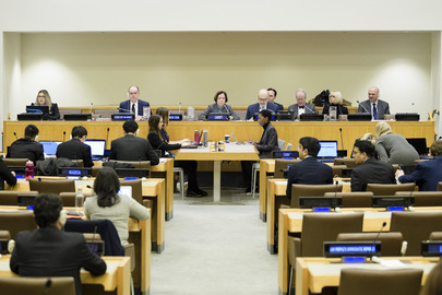 The UN's NGO Committee Defers Rights Groups