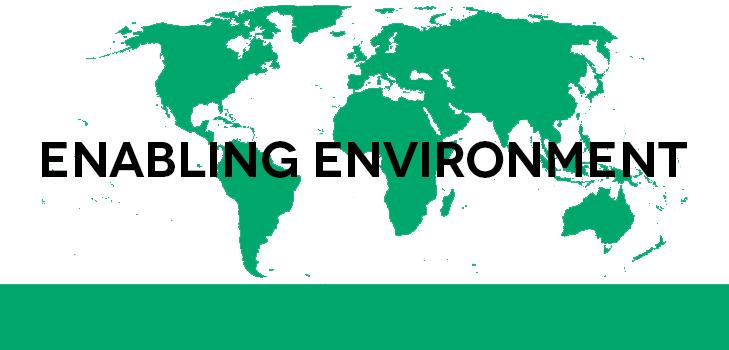 Enabling Environment