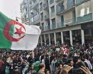 Algérie : Le Parlement européen appelle à agir sur les droits humains et exprime sa solidarité avec les manifestant(e)s