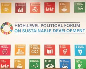 CIVICUSatthe 2019 High Level Political Forum