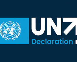 Fulfilling the UN75 Declaration Expert Series
